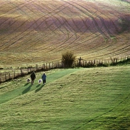 A path through the Chiltern Hills - explore this landscape on a Carter Company bike holiday