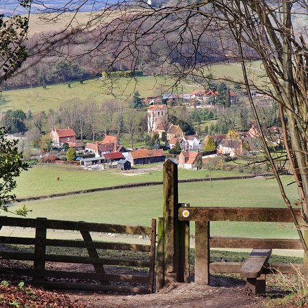 Enjoy charming villages nestled amongst beech woods and the rolling hills and valleys of the Chilterns.