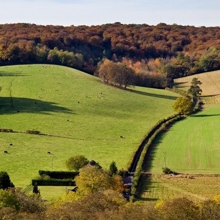 Cycling holiday in the Chilterns - The Dunstable Downs