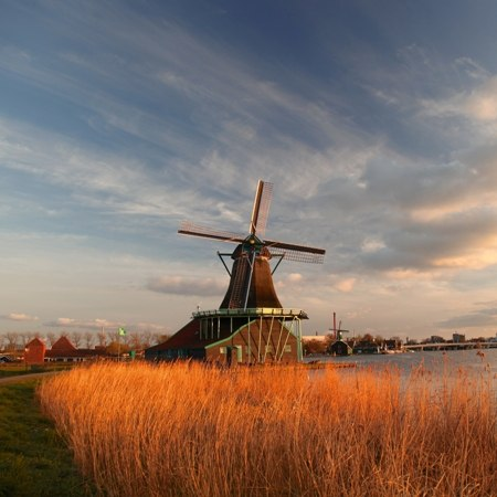 Traditional Dutch windmills on our Highlights of Holland bike tour