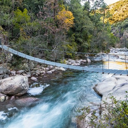 River bridge as featured on our Corsican contrasts walking holiday