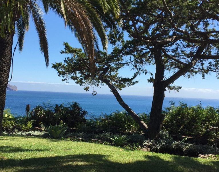 The View from Reid's Garden